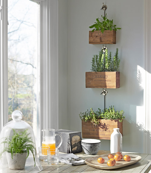 herb-plant-boxes-near-window-north-carolina-home-0512-xln